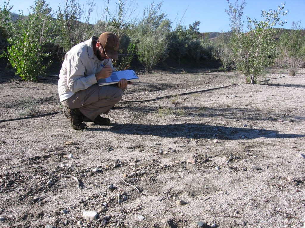 Dudek biologist conducts a spring biology survey. Man crouches over dirt and writes on clipboard.