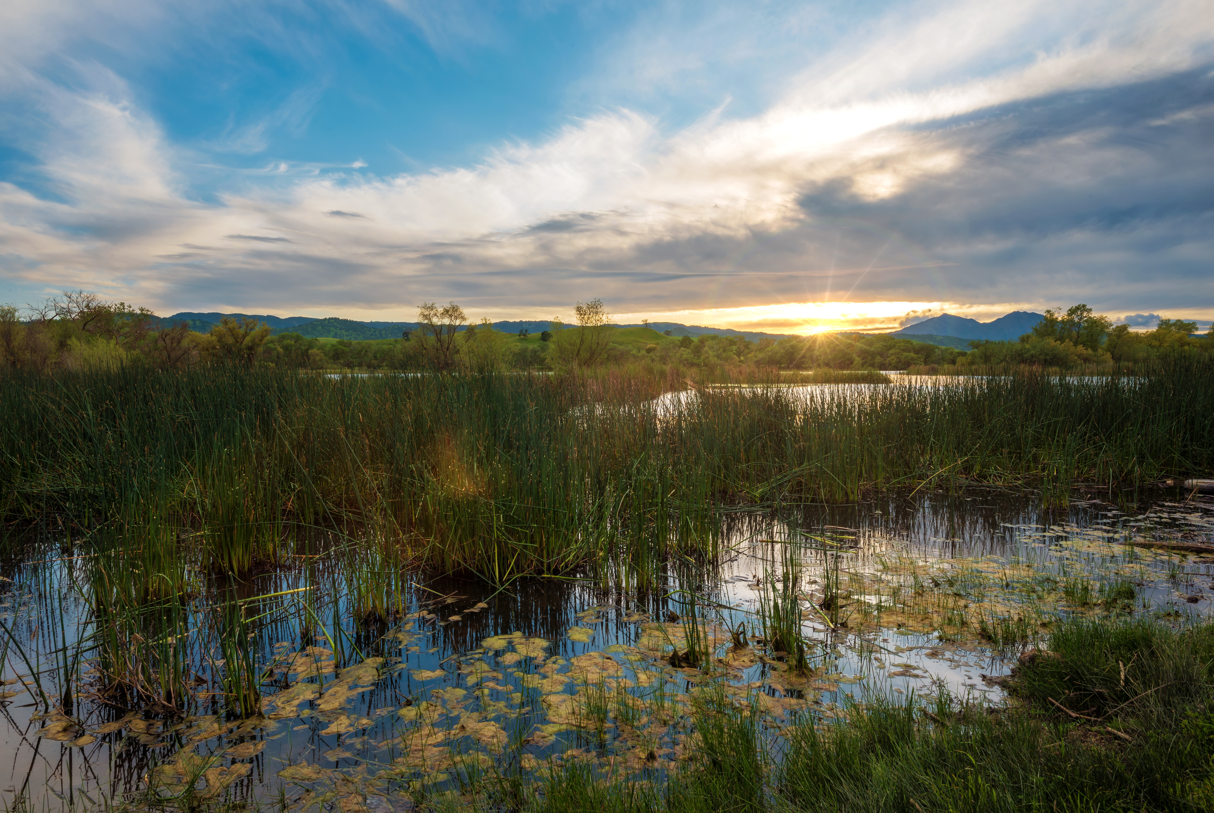 setting sun over mountains and reedy wetlands