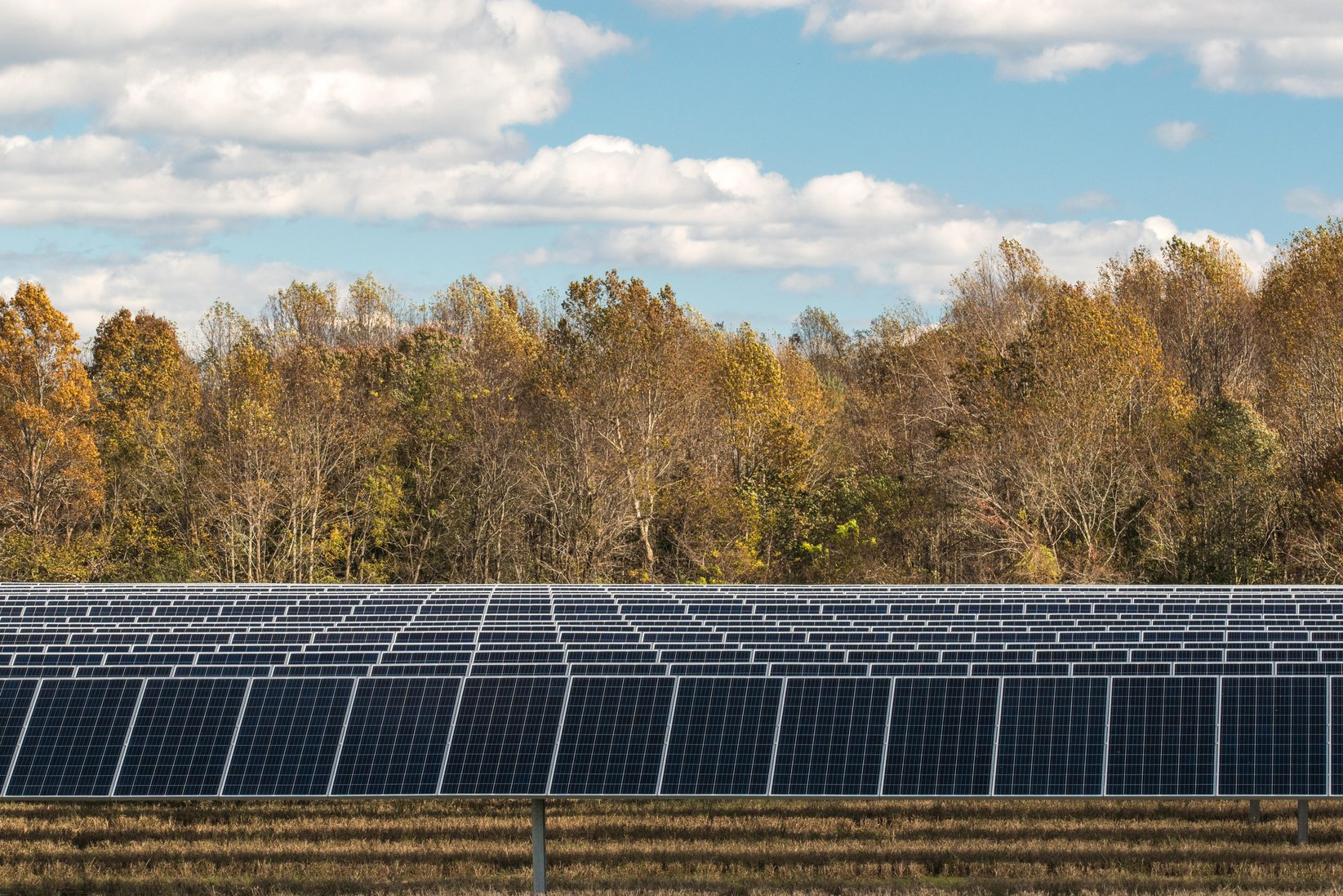 Solar panels on forest-bounded Virginia project site due to successful renewable energy permitting